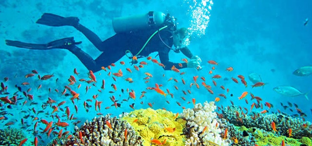 Andaman Tour Packages from Kolkata | Andaman Travel Packages from